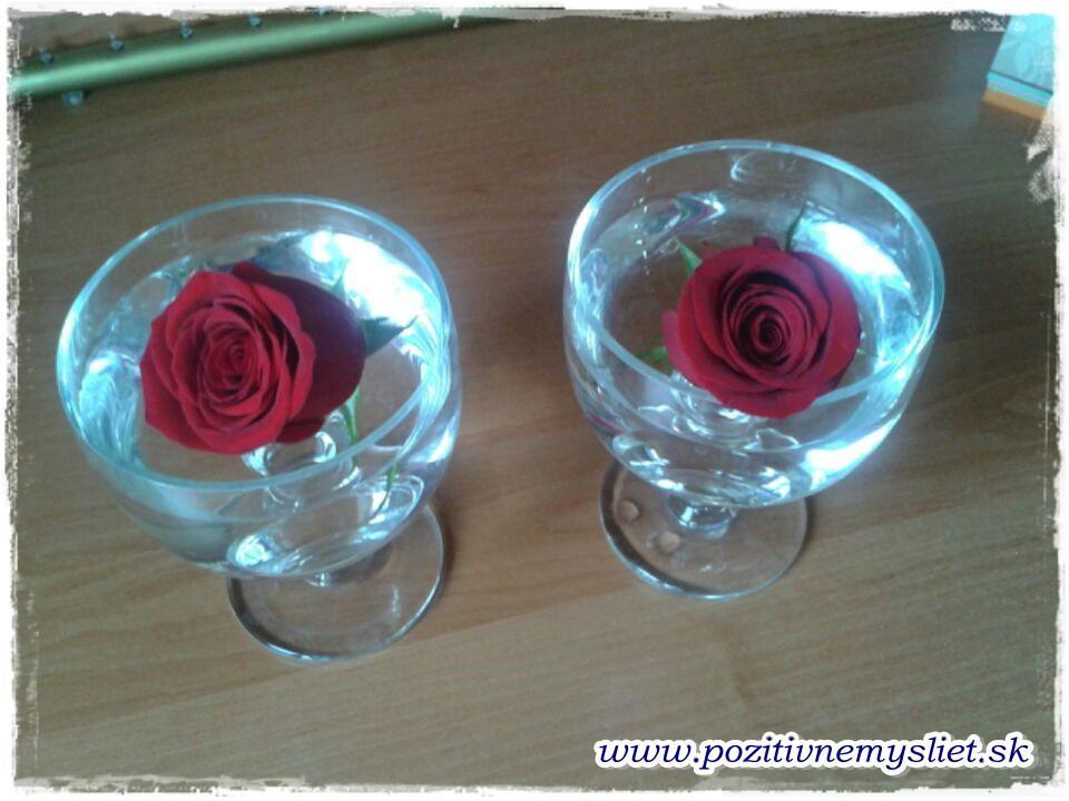 Pokus s ružou - PRED