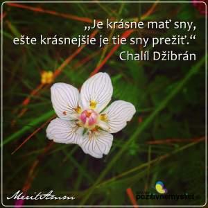 citát, kvet